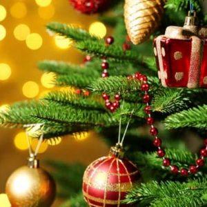 Árboles de Navidad – Consejos de compra, adornos y comentarios