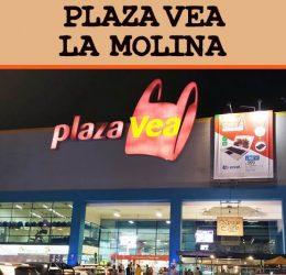 Tienda Plaza Vea La Molina